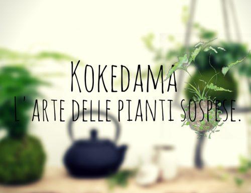 Kokedama – L'arte delle pianti sospese.