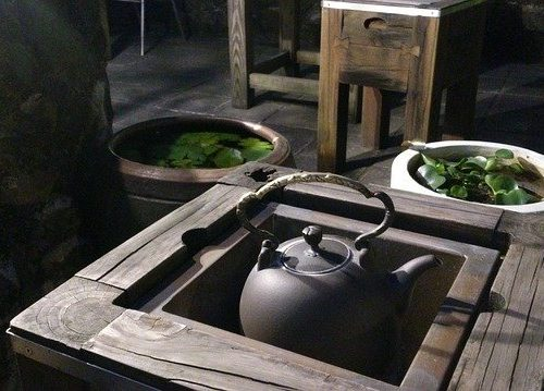 13 libri per avvicinarsi al mondo del tè
