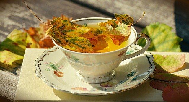 5 tisane e tè