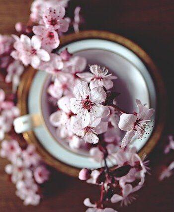 tè floreali